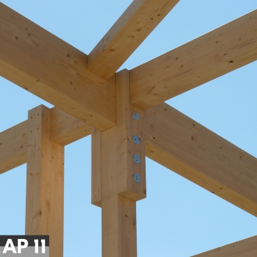 Associated Project 11 - Imperfection Measurements on Timber Members at Risk of Buckling