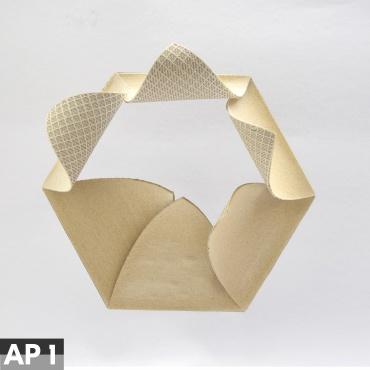Associated Project 1 - Responsive Autonomous Surface Structures